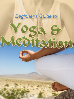 Product picture The Beginners Guide To Yoga & Meditation